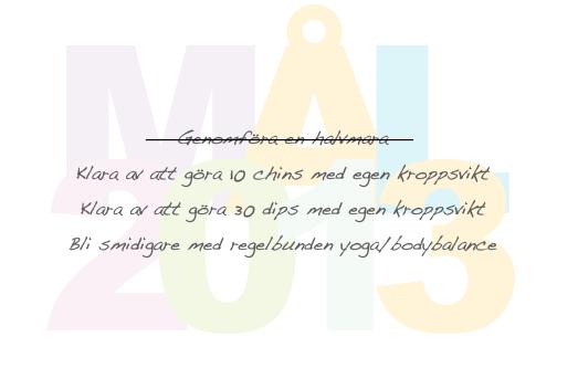 Stinas träningsblogg - Mål 2013